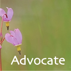 """Purple heart-shaped flower pointing at the word """"Advocate"""""""